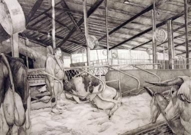 "Jessica's Trip to the Dairy Farm, graphite on paper, 18""x24"", 2005"
