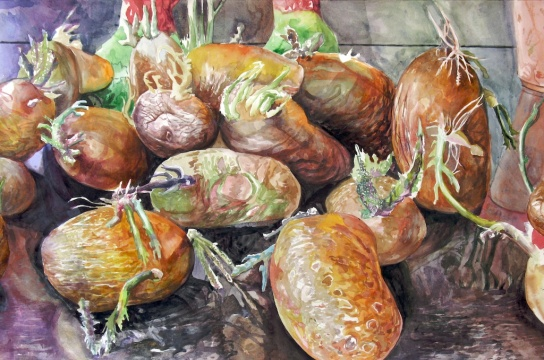 "Our Baby Spud Creatures In Their Glory Days, watercolor on paper, 26""x40"" 2008"