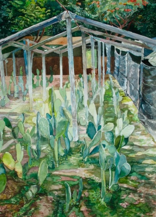 """Nopales Under a Fragile Shield, watercolor on paper, 18""""x24"""", 2006"""